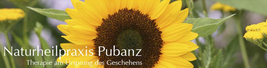 naturheilpraxis_pubanz_2